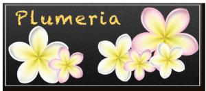 sample_plumeria