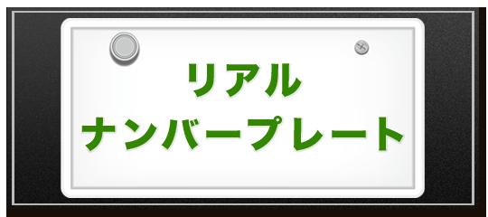sample_number_plate