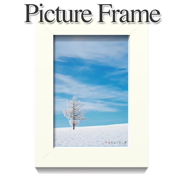 2014_Picture_Frame