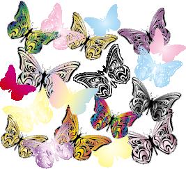 sample_butterflys